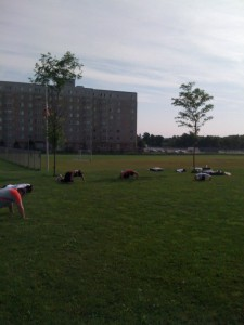 Circuit 4 - Squat/Lunge Quick-Pace Circuit w/ Added Push-Ups